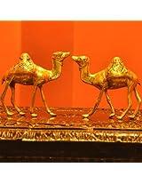 Brass Engraved Curios- Camels (BECC)