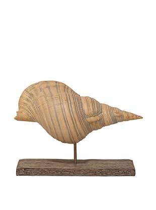 Palecek Shell On Driftwood, King Conch