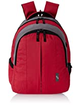 American Tourister Polyester Red Laptop Backpack