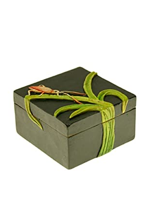 The Niger Bend Small Square Soapstone Box with Cricket on Leaves Design