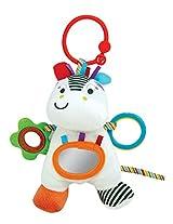 Winfun Zippy Zebra Hand Rattle Squeaker Crinkle Sound, Multi Color