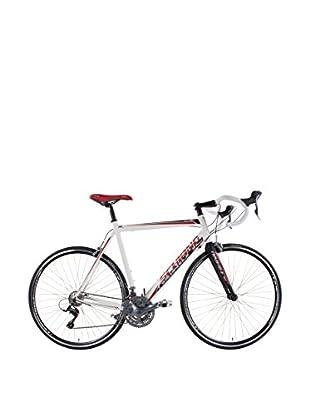 Schiano Fahrrad 24 Corsa Road Race Alloy 24 Vel. H Telaio 590