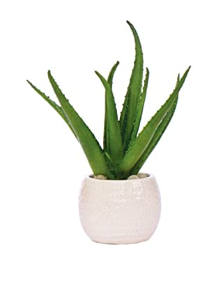 Lux-Art Silks Aloe in Oatmeal Container, Green