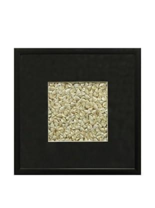 Star Creations Pearl Among Pong Shells & Black Molding Shadowbox Art