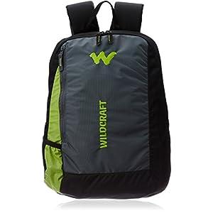 Wildcraft Streak Nylon 20 Ltrs Green Laptop Bag (8903338009542)