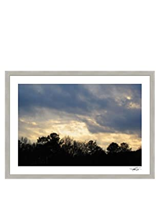Thom Felicia-Tree Line Landscape A