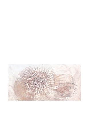 PlatinArt Cuadro Ammonite 65 x 130