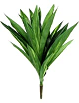 Fourwalls Artificial 46 cm Tall Dracaena Bush (Green)