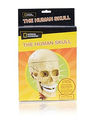 National Geographic Juguete Educativo Human Skull Único Mayores de 8 años