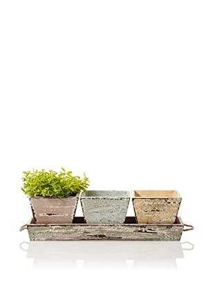 Wald Imports Vintage-Look Wood Planters & Tray Set, Assorted Pastels