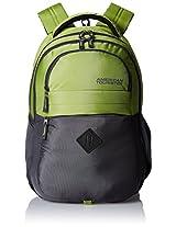 American Tourister Encarta Lime Laptop Backpack (Encarta 06_8901836132984)