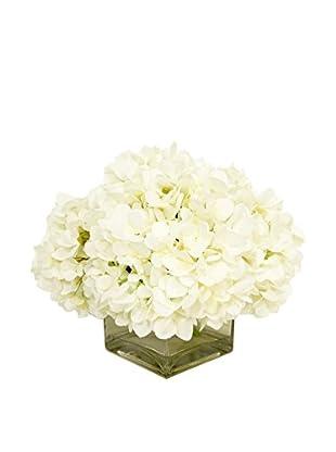 Creative Displays Crisp Hydrangeas in Square Glass Container, White