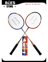 BEES STING BADMINTON SET + 6 NACTOR SHUTTLE