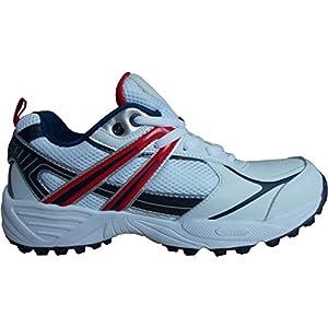 Balls Cricket Shoe 450 REVO (White/Blue/Black )