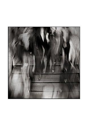 77 Photography On Mounted Metal