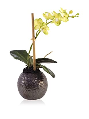 New Growth Designs Faux Small Potted Orchid (Yellow)