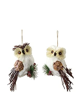 Melrose International Set of 2 Owl Ornaments, White/Brown