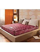 Springfit Spring DX-Gold Collection 6 Inch Single Mattress