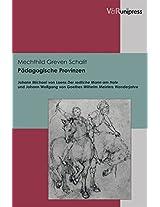 Padagogische Provinzen: Johann Michael Von Loens Der Redliche Mann Am Hofe Und Johann Wolfgang Von Goethes Wilhelm Meisters Wanderjahre