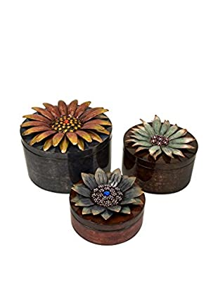 Felicity Set Of 3 Dimensional Flower Storage Boxes, Brown