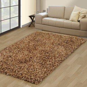 Beige Contemporary Carpet