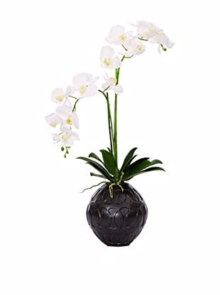 Lux-Art Silks Orchid In Black Container (White)