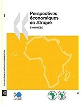 Perspectives Economiques En Afrique 2009: Synthese (Oecd Development Centre)