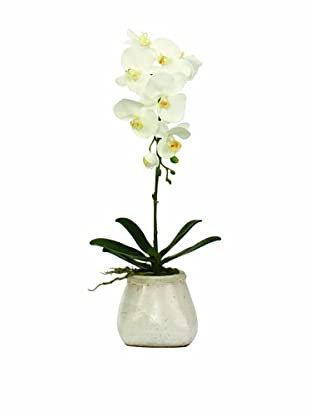 Lux-Art Silks Orchid In Small Stoneware (White)