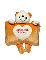 Sunshine Soft Pillow with Teddy on Top - Fully Non-Toxic - 24X14 Inches (Brown) - Plush Toy, Teddy Bear, Pilllow