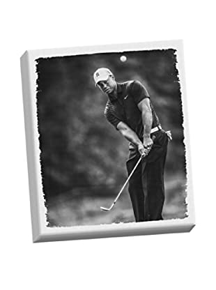 Steiner Sports Memorabilia Tiger Woods Stretched Canvas