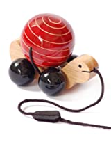Tuttu Turtle (Red) - Maya Organic wooden pull toy with rotating ball