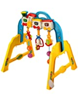 Mee Mee Interactive Play Gym