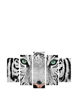 Wallity Tigre