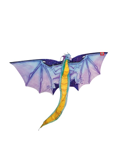 Shure Toys Merlin Night Flyer Kite