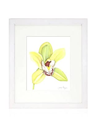 Orchid Beauty II, White/White
