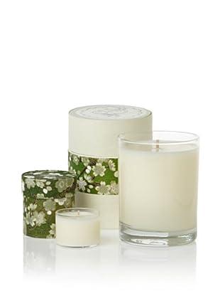Sage Set of 12-Oz. and Mini Vanity Box Candles, Sage