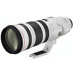 Canon EFレンズ EF200-400mm F4 L IS USM EXTENDER1.4× ズームレンズ 望遠 EF200-400LIS