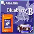 オーガランド ♪ブルーベリー+B(1ヶ月分) オーガランド