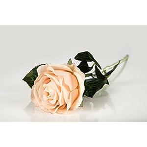 Casa De Regalos Pink Rose