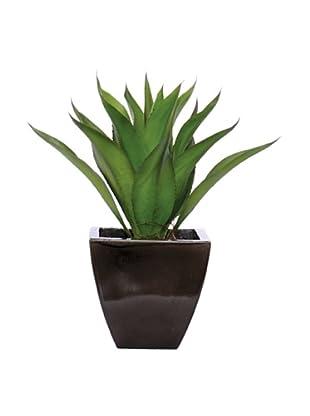 Lux-Art Silks Aeonium in Dark Grey Pot, Green