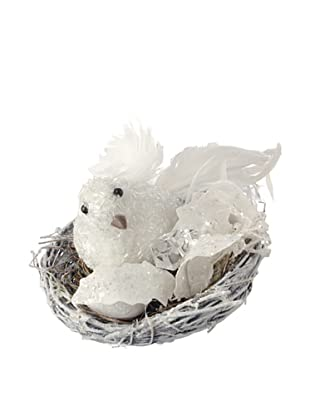 Raz Bird in Nest