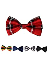 DBFF0027 Multiple Types Satin Elegant Boys Pre-Tied Bow Ties Set - 5 Colors Available By Dan Smith