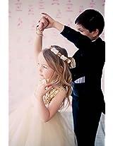 Magic Fairy Girls' Net Dress [MF-305_Gold_2-3 Years]