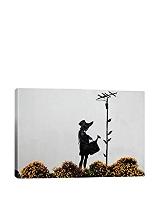Banksy Flower Aerial Gallery Wrapped Canvas Print