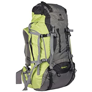 Wildcraft Alpinist Hiking Backpacks-Green