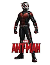 Aquarius Ant-Man - Stand Funky Chunky Magnet