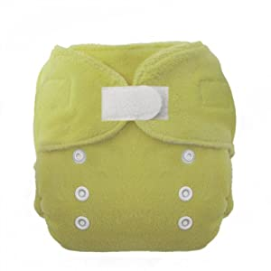 Thirsties Duo Fab Fitted Cloth Diapers, Honeydew, Size Two (18-40 lbs)