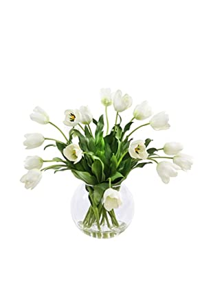 Winward Tulip in Glass, White