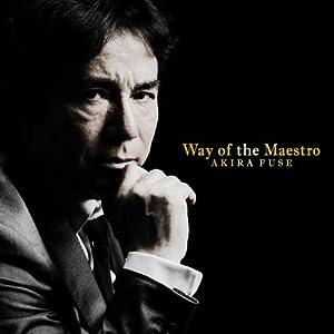 『Way of the Maestro』