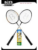 BEES ECONOMY BADMINTON SET + 6 KILLER SHUTLES